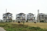 Thuế Tài sản nên lấy tên gọi là Thuế bất động sản, vì chỉ áp dụng đối với nhà, đất