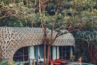 Biệt thự tổ chim trong resort sang chảnh ở Phuket