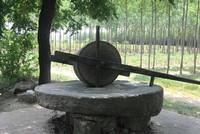 Đại gia Đồng Nai chi 160 triệu đồng mua chiếc cối đá 2 tấn về ngắm