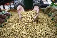 Trung Quốc đánh thuế 106 hàng hoá để trả đũa Mỹ