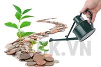 Dòng tiền không ngại rủi ro