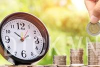 Dòng tiền đầu tư nội - ngoại vào cuộc đua đấu giá