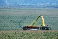 Không kịp chuyển mình, nông nghiệp sẽ lỡ cơ hội đón dòng vốn ngoại