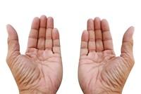 Đường chỉ tay nói lên điều gì về sức khỏe của bạn