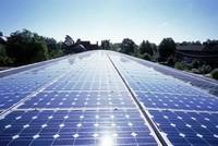 Thay vì sản xuất sữa, TH True Milk muốn đầu tư điện năng lượng mặt trời tại Đắk Lắk