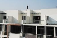 Đất nền, biệt thự hoàn thiện hạ tầng hút khách