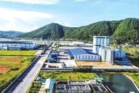 Khu kinh tế Đông Nam (Nghệ An): Điểm đến đầu tư hấp dẫn