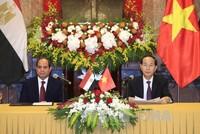 Chủ tịch nước Trần Đại Quang hội đàm với Tổng thống Ai Cập Abdel Fattah Al Sisi