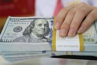 Khuyến nghị áp dụng cơ chế tỷ giá thả nổi có quản lý