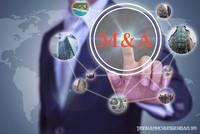 Một số thương vụ M&A tiêu biểu do Đầu tư Bất động sản tổng hợp