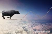 Góc nhìn chuyên gia tuần mới: Cổ phiếu đầu cơ chưa quá nóng