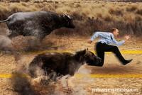 """Lửng lơ giữa 2 phe """"bò"""" và """"gấu"""""""
