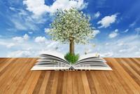 Góc nhìn chuyển gia tuần mới: Nhóm cổ phiếu nào sẽ hưởng lợi từ kết quả kinh doanh quý I?
