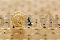 Bất cập phí đấu giá, công ty chứng khoán làm… không công?
