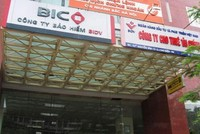"""BIC sẽ """"chốt"""" cổ đông chiến lược trong năm 2014"""