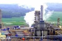 Đến giữa tháng 4, phải bàn giao đất Dự án Hóa dầu Long Sơn