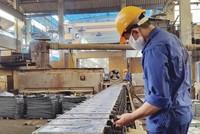 Rắc rối cổ phần hóa Công ty Kim loại màu Thái Nguyên: Ai lãnh trách nhiệm trả nợ?