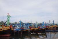 Bảo hiểm tàu cá, triển vọng tăng trưởng cao