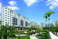 NLG bán 150 căn hộ EHome 4 trong 1 tuần