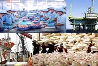 HSBC: Triển vọng thương mại Việt Nam rất hứa hẹn