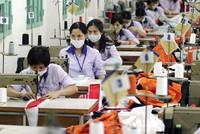 Chọn cơ hội đầu tư trước kỳ vọng TPP tháng 9