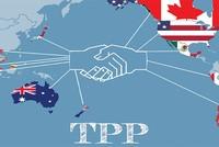 6 điều cần phải biết về TPP