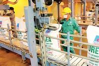 Nhà máy Đạm Phú Mỹ đạt sản lượng 790.000 tấn trước kế hoạch