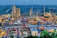 Chính phủ chỉ đạo cổ phần hóa DN quy mô lớn của tập đoàn kinh tế