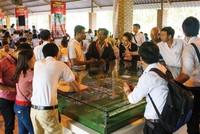 LDG Group mở bán đợt 2 nhà phố xây sẵn