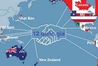 TPP - hệ thống ngân hàng và hai  mặt của tấm huy chương…
