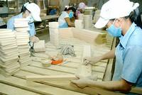 Lý do khiến doanh nghiệp nhỏ của Việt Nam không thể lớn