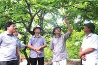 Quảng Ninh hình thành khu nông nghiệp ứng dụng công nghệ cao