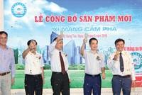 Xi măng Cẩm Phả gia tăng thị phần tại phía Nam