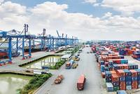 TPP có làm thị phần bảo hiểm teo lại?