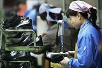 Doanh nghiệp Đài Loan dồn vốn vào ngành da giày Việt Nam