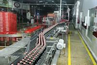 Coca-Cola khẳng định đáp ứng vệ sinh an toàn thực phẩm của Bộ Y tế