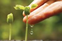 Thực hiện phát triển bền vững: Cam kết của lãnh đạo là một nửa thành công!