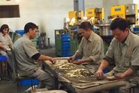 Lao động sinh con thứ 3 khiếu kiện khóa Việt Tiệp sa thải sai quy định