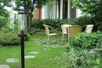 Những điểm cần lưu ý về phong thủy khi trồng cây xanh quanh nhà