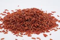Hơn 76 tỷ đồng đầu tư dự án Nhà máy sơ chế và chế biến thực phẩm từ gạo