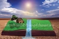 Hồ nước trong dự án: Không phải đặt đâu cũng được