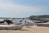 Không để xảy ra tiêu cực trong bồi thường sự cố môi trường biển