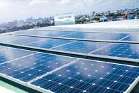 Điện mặt trời ở Việt Nam đang như đứa con bị... bỏ rơi!