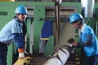 """Doanh nghiệp Hàn Quốc có mặt ở mọi """"ngõ ngách"""" của nền kinh tế Việt Nam"""