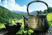 Ly trà ngày cúp điện
