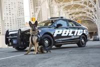 Ford trình làng chiếc xe cảnh sát mới dành cho những cuộc rượt đuổi tốc độ cao