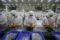 DOC thay đổi cách tính thuế với tôm nhập khẩu từ Việt Nam