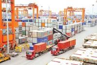 Thúc đẩy xuất khẩu và sự trăn trở về thương hiệu Việt