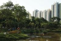 Chủ đầu tư địa ốc chạy đua cạnh tranh bằng thiết kế