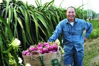 """Doanh nhân Ưng Thế Lãm, sở hữu thương hiệu thanh long TICAY: """"Tôi chỉ là nông dân"""""""